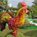 Фестиваль цветов - 2014